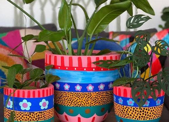 Happy pots 12th June
