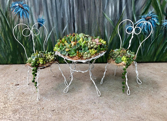 Mini Succulent Table and Chairs 25th July