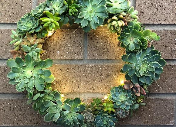 Christmas Succulent Wreath Workshop 4th Dec