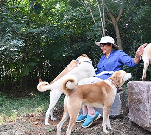 Kirti with dogs in forest 25Nov2019.JPG