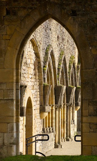 Orval, abbaye/abbey, ruines/ruins, vers le cloître/to the cloister - 2021