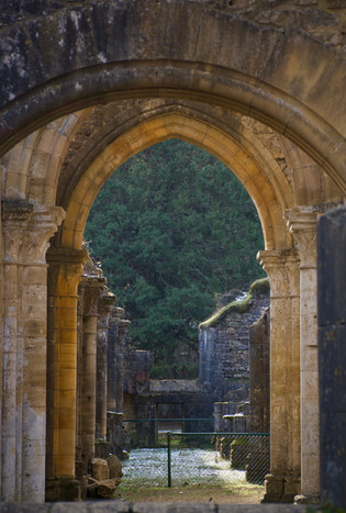 Abbaye d'Orval, ruines - 2021
