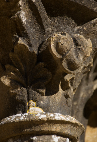Abbaye d'Orval, ruines, chapiteaux_3 - 2021
