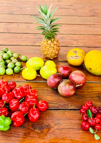 Holistic Health Consultations are availible at Mana Wellness