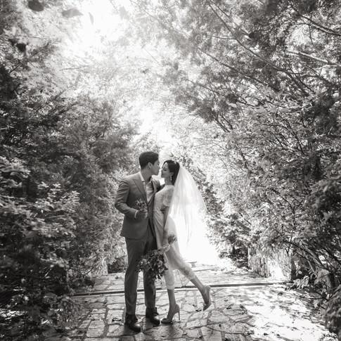 Arboretum photography
