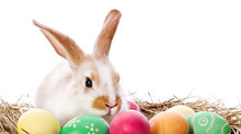 Easter Hours!