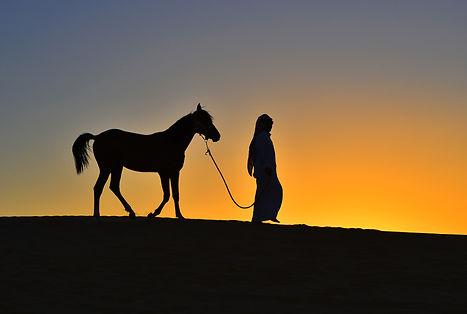 ahmad_alhuzaim_ - سناب _ ahmad-0000 .jpg