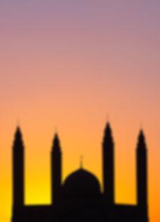 Nizwa Sultan Qaboos Mosque _ جامع السلطا