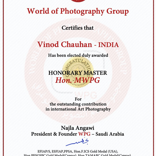 18-Vinod Chauhan - INDIA-Hon.MWPG 2020.j