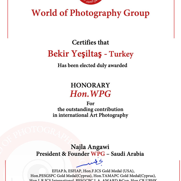 72-Bekir Yeşiltaş- Turkey -Hon.WPG 2019