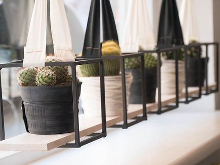 stylen van hangende cactussen