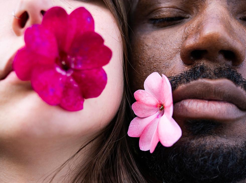 Acreditam nas flores vencendo o canhão e ainda fazem da flor seu mais forte refrão.