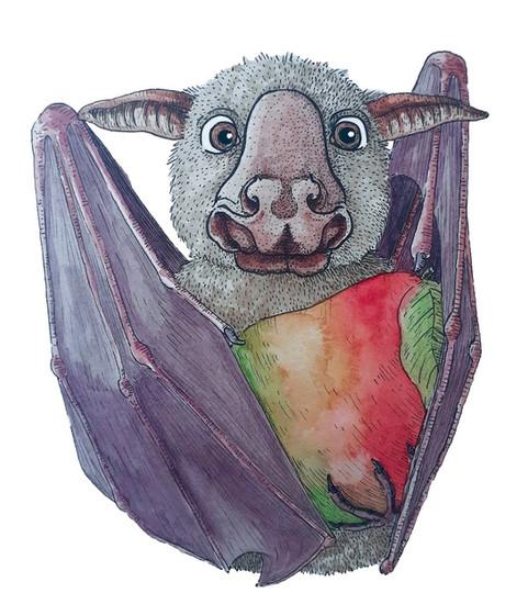 African Fruit Bats