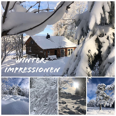 Wintercollage2.JPEG