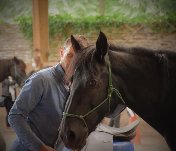 Rencontre avec son cheval