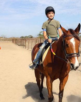 San Diego Therapeutic Horsemanship