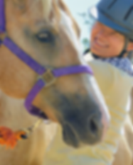 San Diego Therapeutic Horsemanship Spons