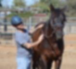 San Diego Therapeutic Horsemanship Program Session