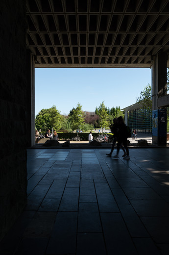 Undercroft of the Library at UCD, Dublin