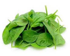 Baby Spinach 嫩菠菜
