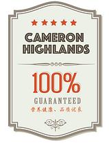 Chocobo Trading- Cameron Highland wholesale vegetable