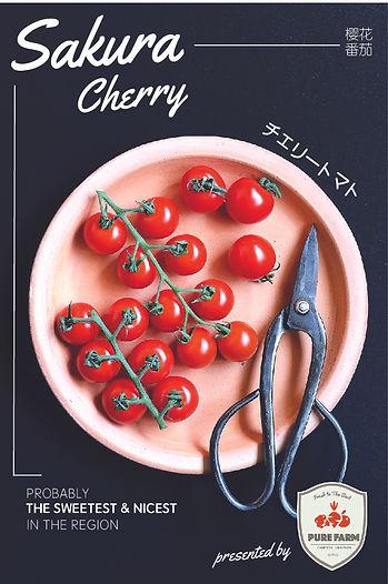 Chocobo Trading- Cameron Highland Vegetable Supplier:Sakura Cherry .jpg