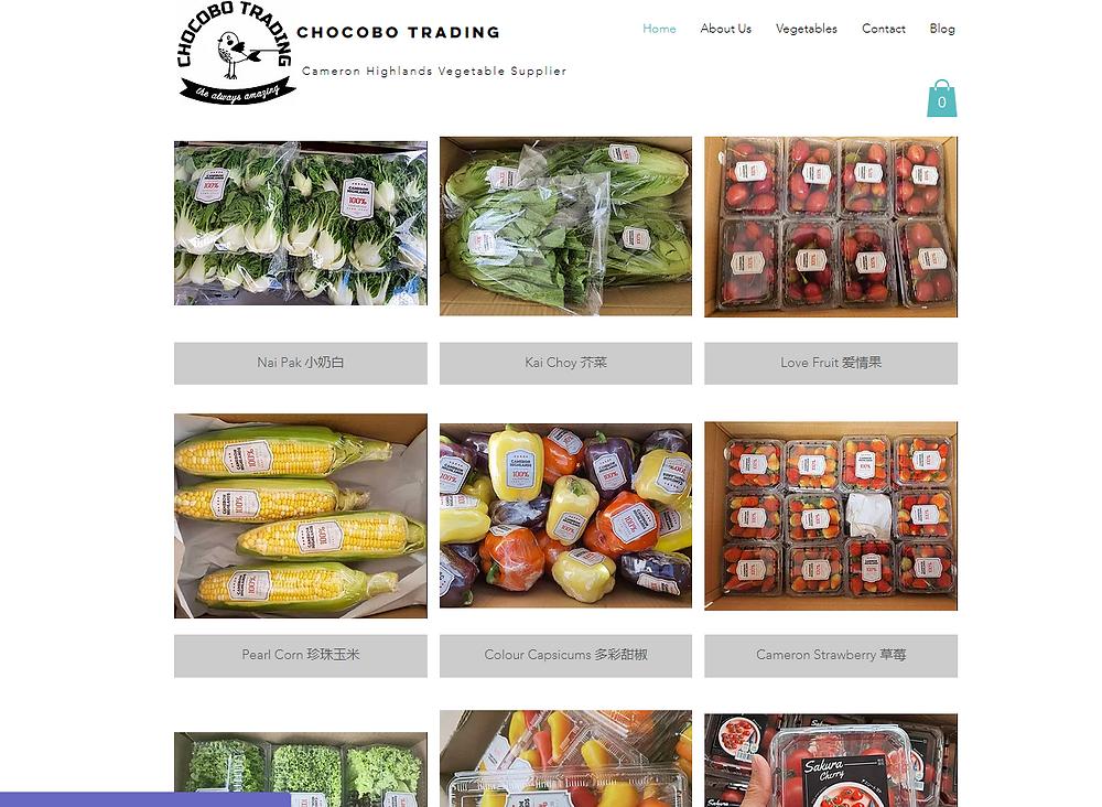 Cameron Highland Wholesale Vegetable Supplier- Chocobo Trading