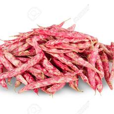 Red Bean 红豆