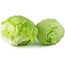 Iceberg Lettuce 生菜