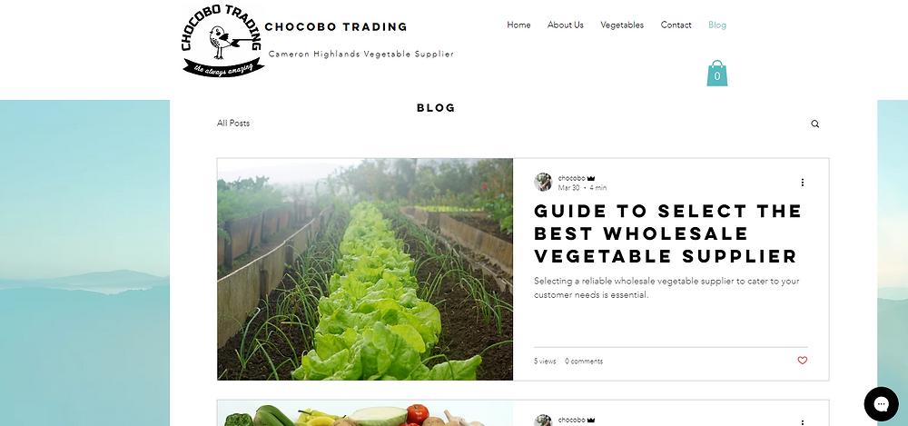 Chocobo Trading- Cameron Highland Vegetable Supplier Blog