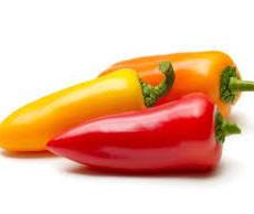 Sweet Pepper 小甜椒