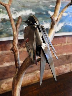 Bird on vine close-up