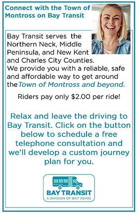 Bay Transit Ad - Montross Web Size2.jpg