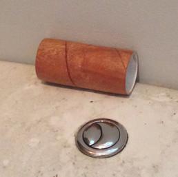 Toilet roll, 2016