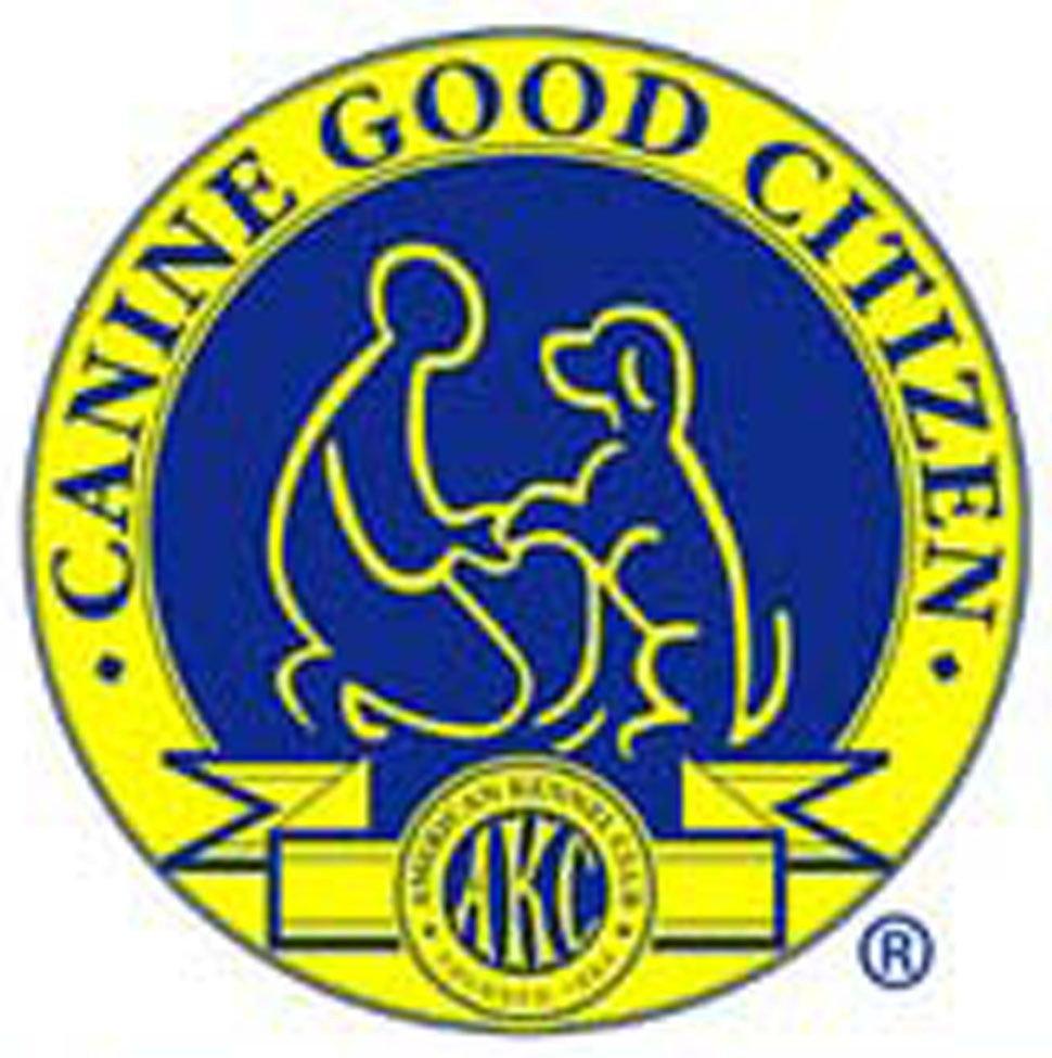 CGC: Canine Good Citizen