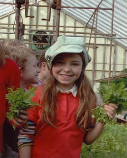 Farm 4268