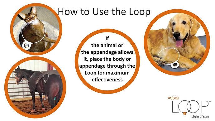 Assoso Loop1.jpg