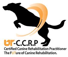 cert_ccrp1.png
