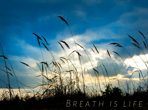 Breath is Life