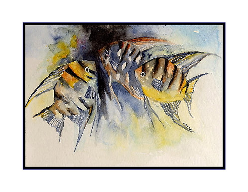 Angelfish Watercolor and Ink Note Cards