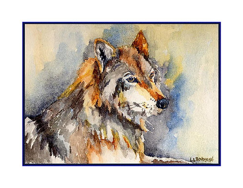 Eye of the Wolf Watercolor Note Cards