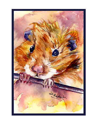 Hamster Watercolor Note Cards