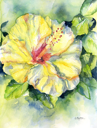 Watercolor Yellow Hibiscus Original Painting