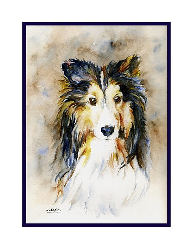 Sheltie Watercolor Note Cards