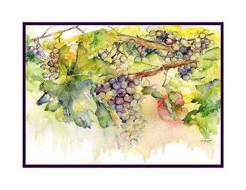 Watercolor Summer Grapes Cards