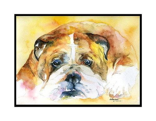 Watercolor Bulldog Note Cards