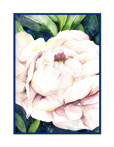 Watercolor White Peony Cards