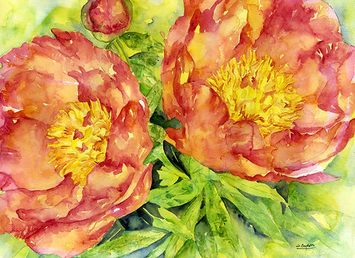 Acrylic and Watercolor Red Peonies Original Painting