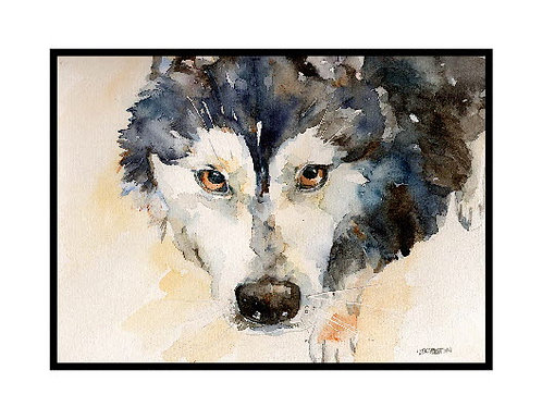 Eyes of a Siberian Husky Watercolor Note Cards