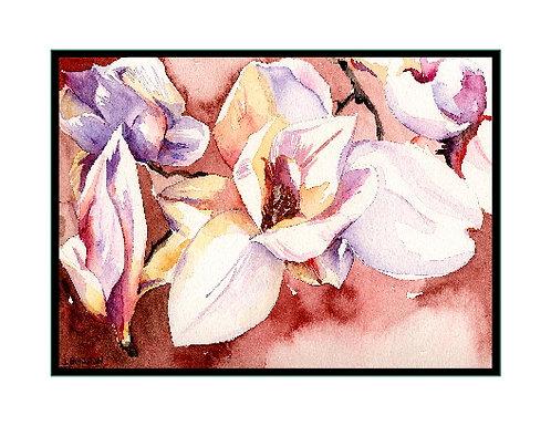 White Magnolia Watercolor Note Cards